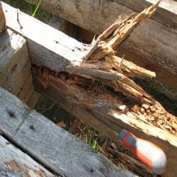 timber decay in decking sub-structure